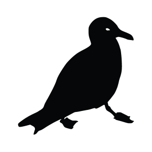 Seagull Silhouette Stencil